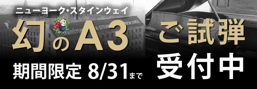 ニューヨークスタインウェイ 幻のA3 ご試弾受付中 期間限定8月31日まで